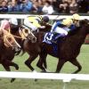 【エリザベス女王杯2001】トゥザヴィクトリーが上がり33秒9の鬼脚でレコードV!